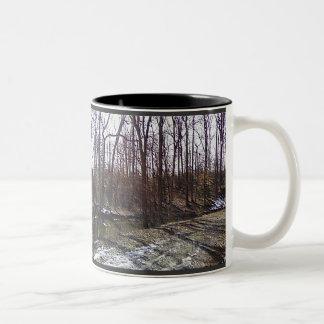 La taza de maderas