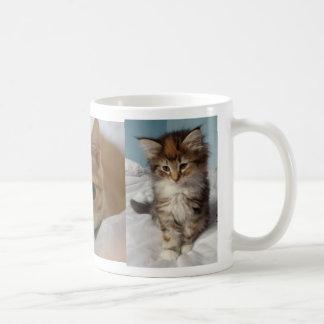 La taza más linda