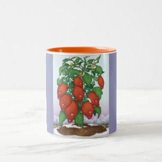 La taza resistente de la planta de tomate de los