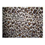 La textura del leopardo postal
