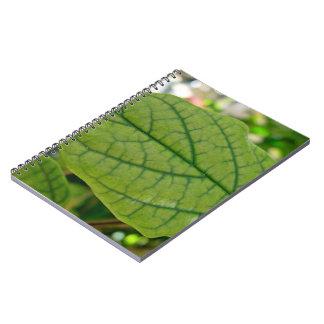 La textura venosa de una hoja cuadernos