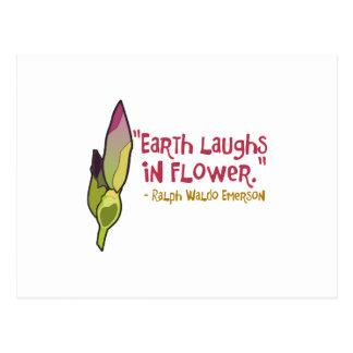 La tierra ríe en flor tarjetas postales