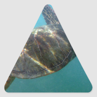 La tortuga de mar nada en el agua pegatina triangulo