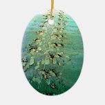 La tortuga de mar sigue el ornamento ornamente de reyes