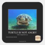 La tortuga no está enojada pegatina cuadrada