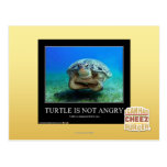 La tortuga no está enojada tarjeta postal