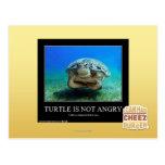 La tortuga no está enojada tarjetas postales