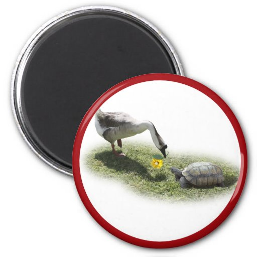 La tortuga y el ganso (añada su texto) imán redondo 5 cm