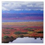 La tundra del parque nacional de Denali a finales  Azulejo Cuadrado Grande