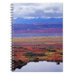 La tundra del parque nacional de Denali a finales  Libros De Apuntes