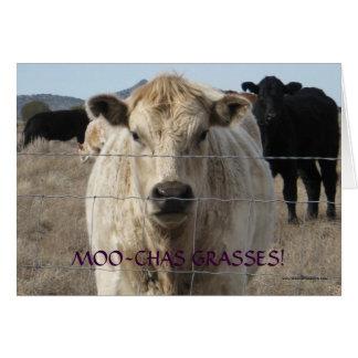 La vaca blanco y negro linda le agradece - rancho  tarjeton