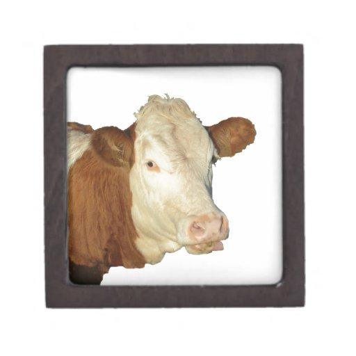 La vaca caja de joyas de calidad