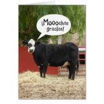 La vaca de habla hispana divertida le agradece car tarjetón