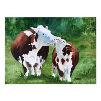 La vaca se lame fotografías