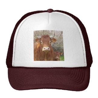 La vache et son veau trucker hat