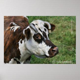 La vache normande poster