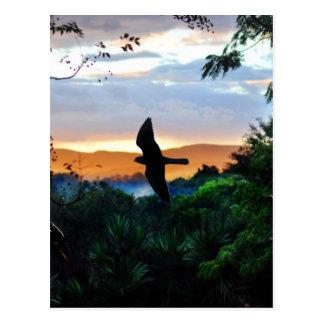 La ventana de dios con el pájaro en vuelo postal