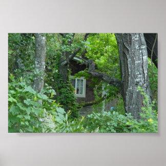 La ventana de la naturaleza póster
