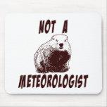 La verdad sobre Groundhogs Tapetes De Ratón