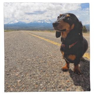 La Veta Colorado Napkin