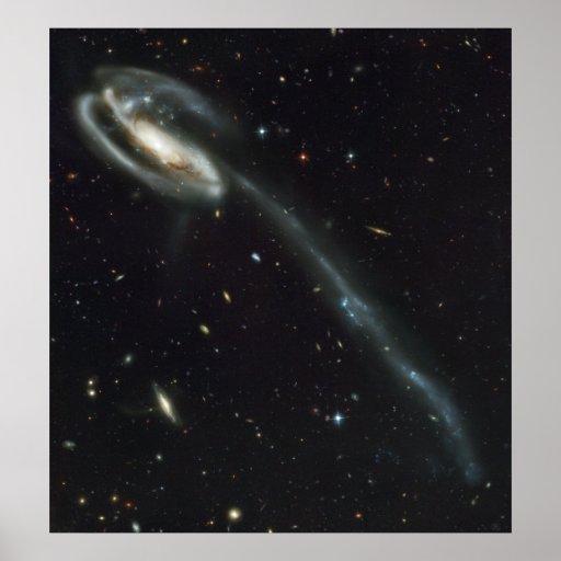 La víctima torcida galaxia del Tadpole Póster
