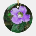 La vid bonita florece 1 sedoso adorno de navidad