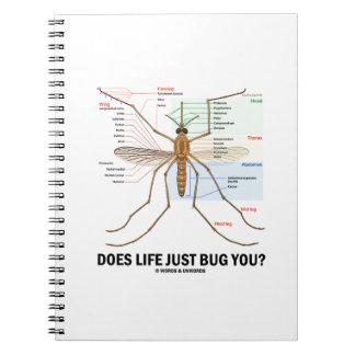 ¿La vida apenas le fastidia? (Anatomía del Cuadernos