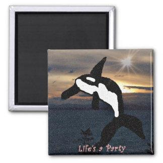 La vida de la ballena de la orca es un imán del fi