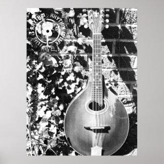 La vida de la mandolina es fotografía del ritmo poster