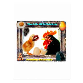 La vida de un pollo postal