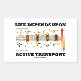 La vida depende del transporte activo (la bomba pegatina rectangular