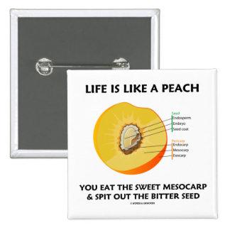 La vida es como un melocotón come el mesocarpio du pin