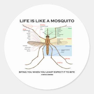 La vida es como un mosquito que le muerde cuando etiqueta redonda