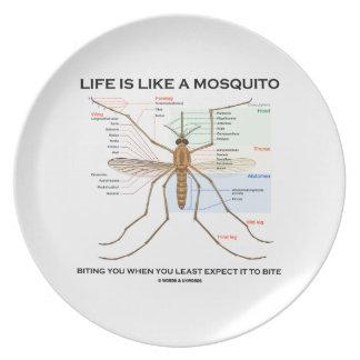 La vida es como un mosquito que le muerde cuando u plato de comida