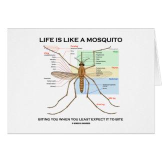 La vida es como un mosquito que le muerde cuando u felicitaciones