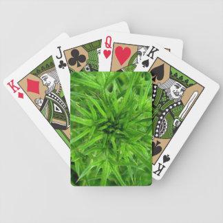 la vida es espinosa baraja cartas de poker