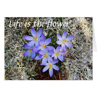 La vida es la flor tarjeta de felicitación