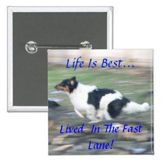 La vida es la mejor…, vivido en el carril rápido pins