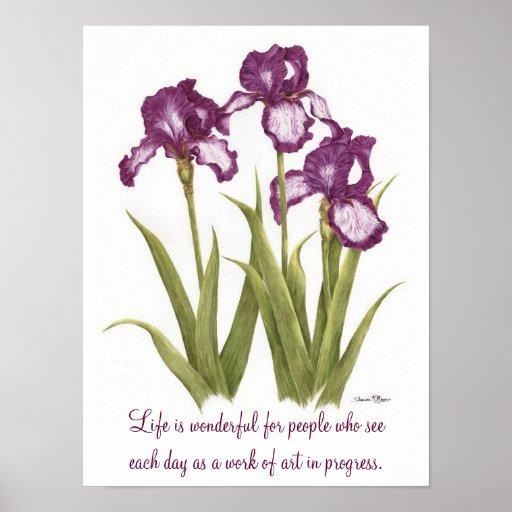 La vida es maravillosa…. Iris - poster