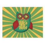 La vida es un búho de pitido postales