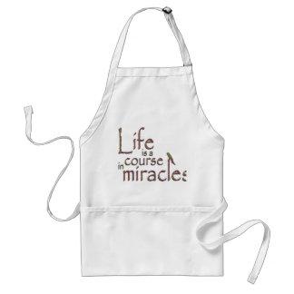 La vida es un curso en milagros delantal