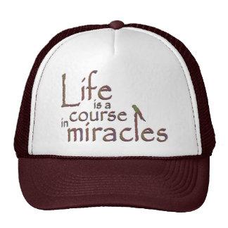 La vida es un curso en milagros gorros