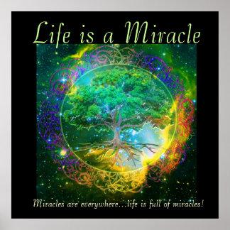 La vida es un milagro póster