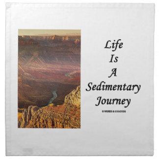 La vida es un viaje sedimentario (el Gran Cañón) Servilleta