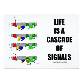"""La vida es una cascada de las señales (la invitación 5"""" x 7"""""""
