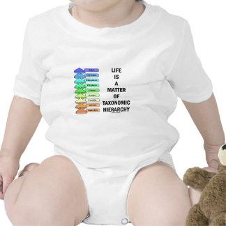 La vida es una cuestión de jerarquía taxonómica l traje de bebé
