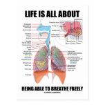 La vida está todo sobre poder respirar libremente postal