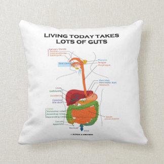 La vida hoy toma porciones de sistema digestivo de cojín