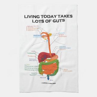 La vida hoy toma porciones de sistema digestivo de toalla de mano