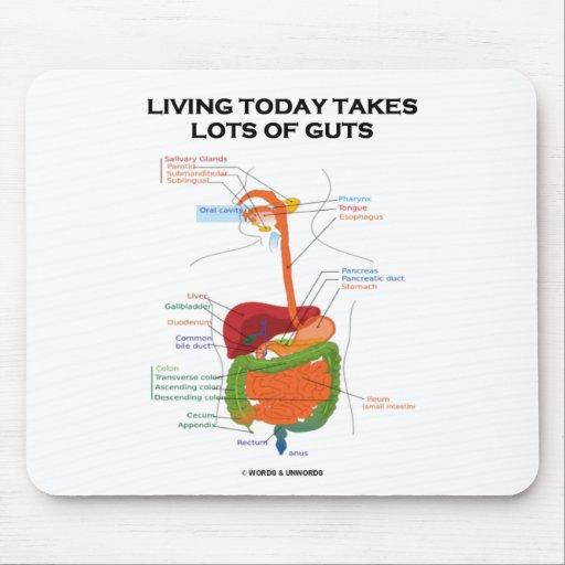 La vida hoy toma porciones de tripa (el sistema di alfombrillas de ratones